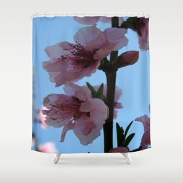 Pastel Pink of Peach Tree Blossom Shower Curtain