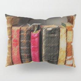 Vintage Books Portrait Pillow Sham