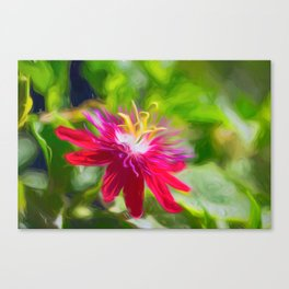 Red Passion Flower Canvas Print