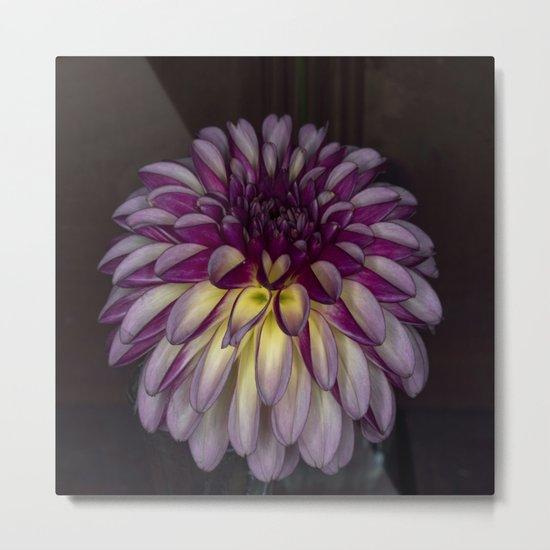 Flower glow Metal Print