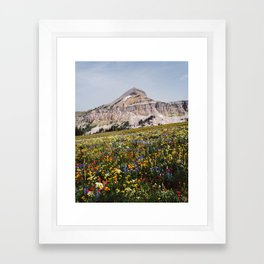 Fossil Mountain Wildflowers Framed Art Print