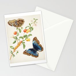 Maria Sibylla Merian Vintage Butterfly Print, 1702 Stationery Cards