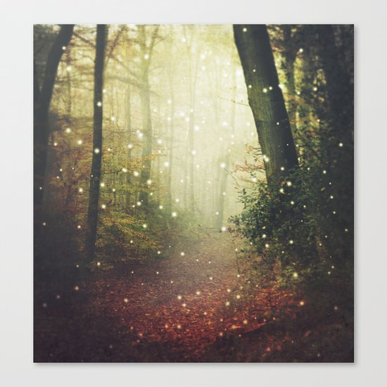 Forest of Miracles and Wonder Canvas Print