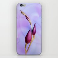 orchid iPhone & iPod Skins featuring Orchid by Christine baessler