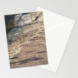 Reed Shadows Stationery Cards