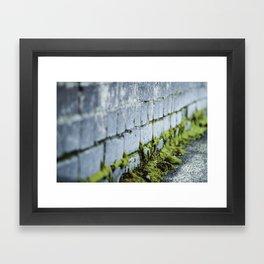 Cerulean Mortar Framed Art Print