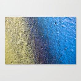 Gala Canvas Print