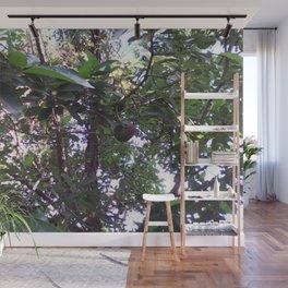 Avocado Tree Wall Mural