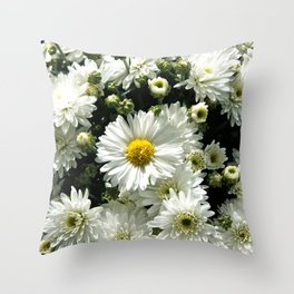 Daisy Dandy Throw Pillow