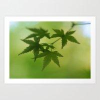 Maple Art Print