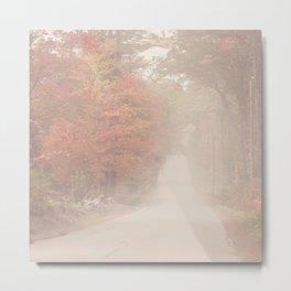 Foggy Autumn Day Metal Print