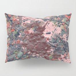 Autumn 07 Pillow Sham