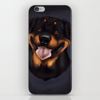 rottweiler iPhone & iPod Skins featuring Rottweiler 2 by Mickeyila Studios