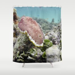 Red Nudibranch Shower Curtain