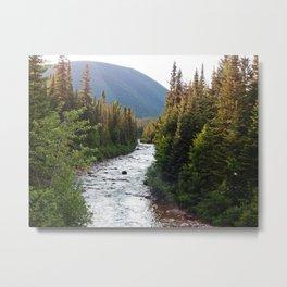 Mountain Fresh Winding River Metal Print
