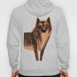 Kai Ken ( Tiger dog) Hoody