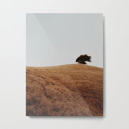 Solo Tree Metal Print