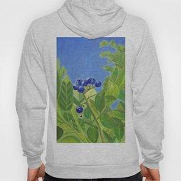 Maine Blueberries Hoody