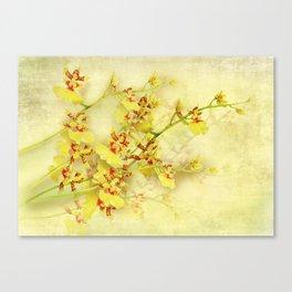 Golden Shower Canvas Print