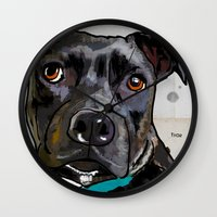 bull terrier Wall Clocks featuring Dog: Staffordshire Bull Terrier by Ed Pires