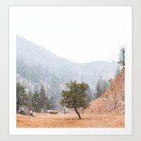 Colorado Spring Snow Art Print