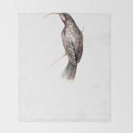 Huia - a native New Zealand bird 2011 Throw Blanket