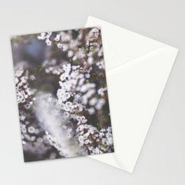 The Smallest White Flowers 01 Stationery Cards