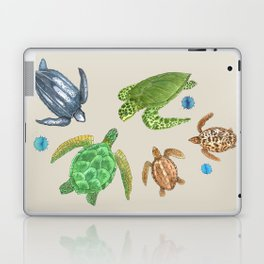 Sea Turtle Types Laptop & iPad Skin