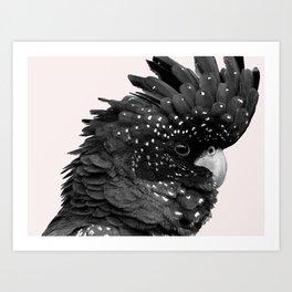 Black Billie Art Print