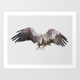 Arctic Eagle Art Print