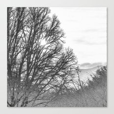 Black and White Sunrise Canvas Print