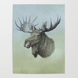 Moose, Elch, Elg Poster