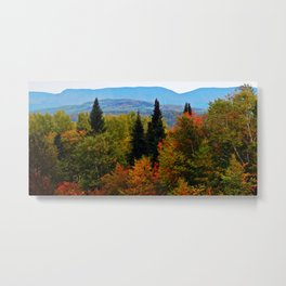 Mont Albert From Afar Metal Print