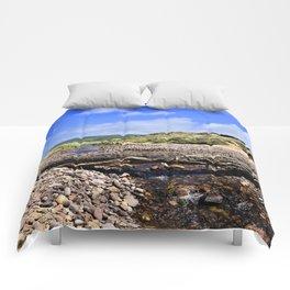 Dune Bridge Comforters