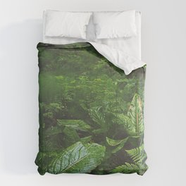 Old Growth Ferns Duvet Cover