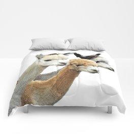 Alpaca Trio Comforters