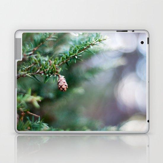Tiny Pine Cone Laptop & iPad Skin