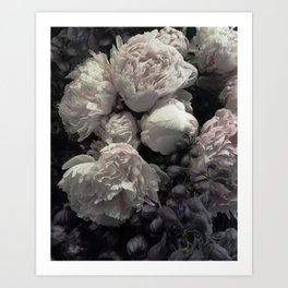 Peonies pale pink and white floral bunch Art Print