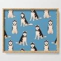 Husky Dogs by nadyabasos