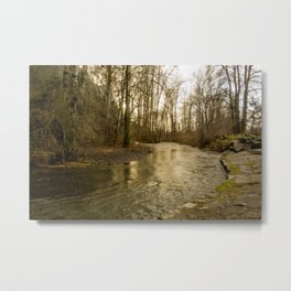 Rios de Oregon 2 Metal Print