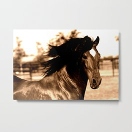 Horse print horse photography equestrian art sepia Poster Metal Print