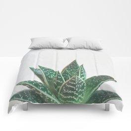 Aloe Tiki Comforters