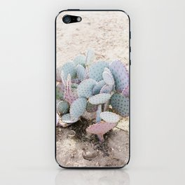 Pink and Mint Cactus iPhone Skin