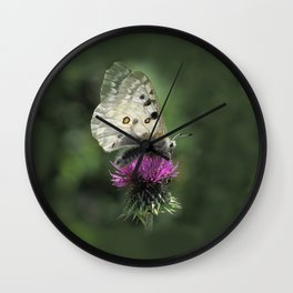 Butterfly on Thistle Flower Wall Clock