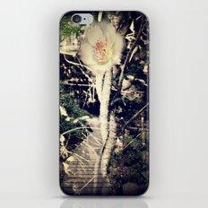 The twisted Path iPhone & iPod Skin