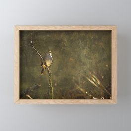Bird on a Branch Framed Mini Art Print