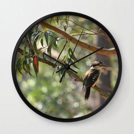 Kookaburra sitting in a gum tree Wall Clock