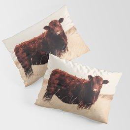 Red Angus Cow Art Pillow Sham