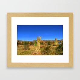 Uros Framed Art Print