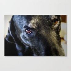 I Have Eyes For You Canvas Print